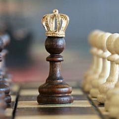 Sukces szachisty z Sulęcina