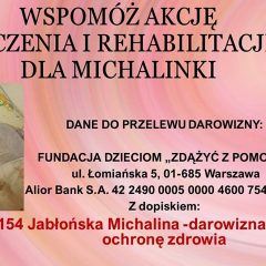 Pomóżmy Michalince